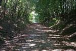 Glacial Drumlin Trail